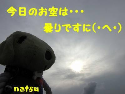 IMG_6054s-.jpg