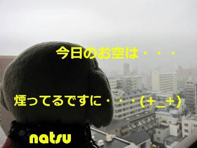 IMG_6062s-.jpg