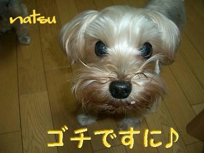 04.11.7三木山オフ 004s-.jpg
