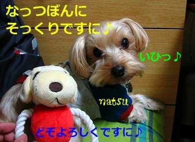 IMG_3489s-.jpg