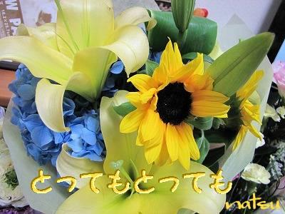 IMG_6013s-.jpg