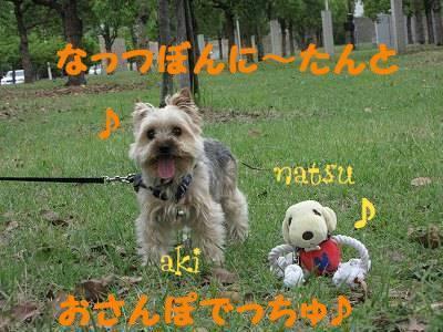 IMG_6030s-.jpg