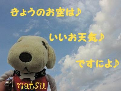 IMG_6038s-.jpg