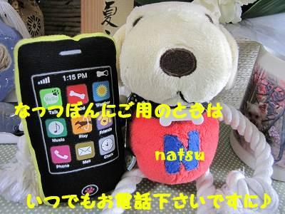 IMG_6059s-.jpg