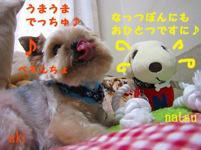 IMG_6202s- のコピー.jpg