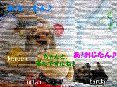 IMG_6979s- のコピー.jpg